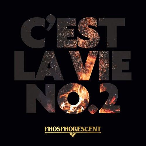 C'est La Vie No.2 by Phosphorescent