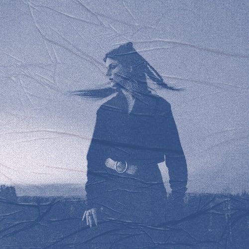 Blue Roses (Blackhill Remix) von Karin Park