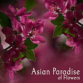 Asian Paradise of Flowers (Spiritual Path to China, Ethno Lounge Journey to Japan) by Asian Flute Music Oasis