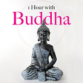 1 Hour with Buddha - Relaxing Music for Meditation de Zen Meditation and Natural White Noise and New Age Deep Massage