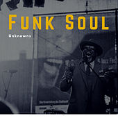 Funk Soul Unknowns (The Rare Grooves) de Various Artists