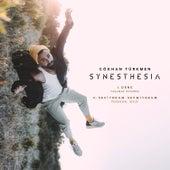 Synesthesia von Gökhan Türkmen