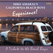 Live by Mike Amaral's California Beach Boys Experience!