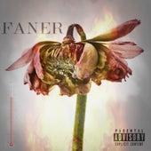 Faner de Various Artists