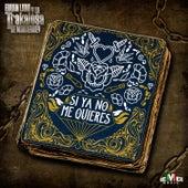 Si Ya No Me Quieres by Edwin Luna y La Trakalosa de Monterrey