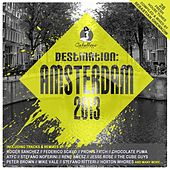 Destination: Amsterdam 2013 von Various Artists