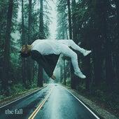 The Fall de Joey Vantes