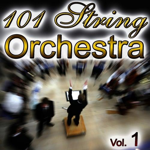 101 String Vol.1 by 101 String Royal Orchestra