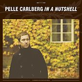 In A Nutshell by Pelle Carlberg
