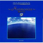 Yume Harmonize de Flute Musicbox Ensemble