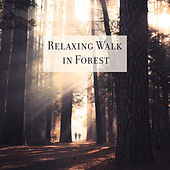 Relaxing Walk in Forest de Nature Sound Collection