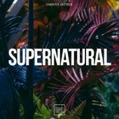 Supernatural van Various