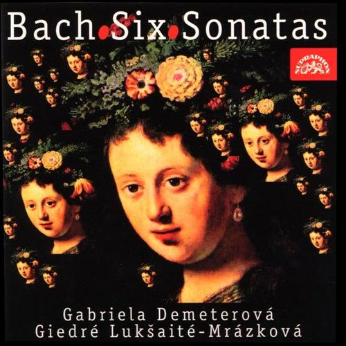 Bach: Sonatas for Violin and Harpsichord BWV 1014-1019 by Gabriela Demeterová