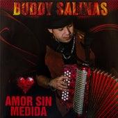 Amor Sin Medida de Buddy Salinas