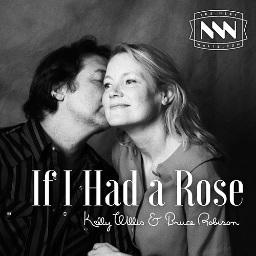 If I Had a Rose by Kelly Willis