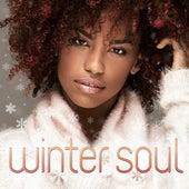 Winter Soul fra Various Artists