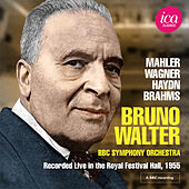 Mahler, Wagner, Haydn & Brahms: Works for Orchestra de Various Artists