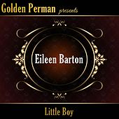 Little Boy by Eileen Barton