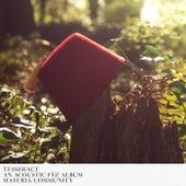 TESSERACT: An Acoustic Fez Album de Various Artists