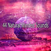 44 Natural Minded Sounds de Zen Meditation and Natural White Noise and New Age Deep Massage