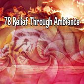 78 Relief Through Ambience von Best Relaxing SPA Music