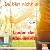 Top 30: Du bist nicht allein - Lieder der Einsamkeit, Vol. 2 by Various Artists