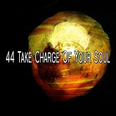 44 Take Charge Of Your Soul von Lullabies for Deep Meditation