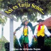 Así Es Tarija Señor | Obras de Orlando Rojas de Various Artists