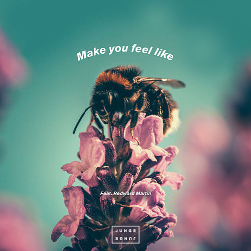 Make You Feel Like von Junge Junge
