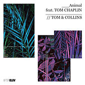 Animal by Tom & Collins