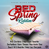 Bed Spring Riddim by Various Artists