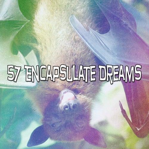 57 Encapsulate Dreams by Baby Sleep Sleep