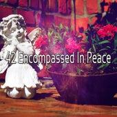 42 Encompassed In Peace de Massage Tribe