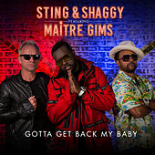 Gotta Get Back My Baby by Sting