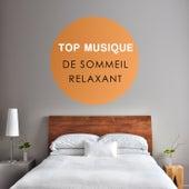 Top musique de sommeil relaxant (Musique de relaxation et de sérénité, La musique est méditer, Pensée positive et musique instrumentale comme remède à l'anxiété) by Various Artists