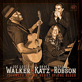 Journeys To The Heart Of The Blues by Bruce Katz and Giles Robson Joe Louis Walker