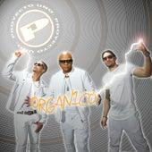 Organico by Proyecto Uno