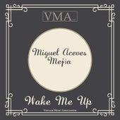 Wake Me Up by Miguel Aceves Mejia