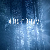 A Light Dream by Nature Sounds (1)