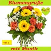 Top 20: Blumengrüße mit Musik, Vol. 5 de Various Artists