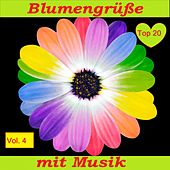Top 20: Blumengrüße mit Musik, Vol. 4 van Various Artists