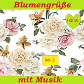 Top 20: Blumengrüße mit Musik, Vol. 3 van Various Artists