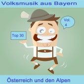 Top 30: Volksmusik aus Bayern, Österreich und den Alpen, Vol. 4 by Various Artists