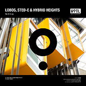 No 9-5 - Single di Los Lobos