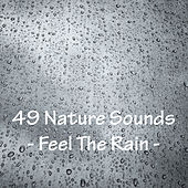 49 Nature Sounds - Feel The Rain by Nature Sounds (1)