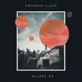 Blippy EP de Promise Land