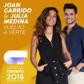 Vuelvo A Verte (Operación Triunfo 2018) de Joan Garrido