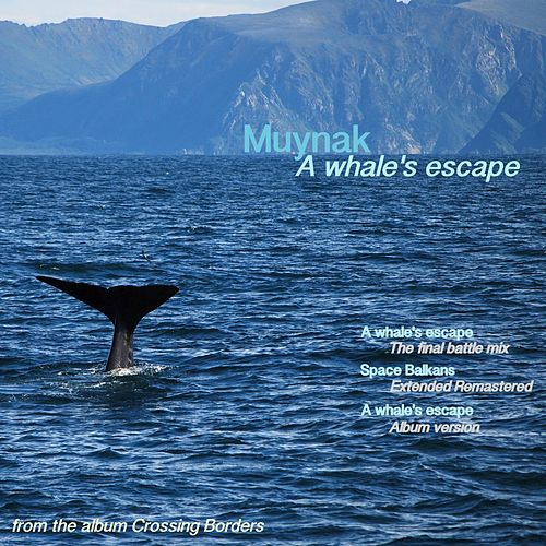 A Whale's Escape by Muynak