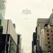 72 / 77 de The Broken Flowers Project