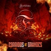 Corridos de Grandes by Grupo Fernandez